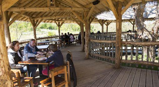 L'Etosha - Restaurant - ZooParc de Beauval