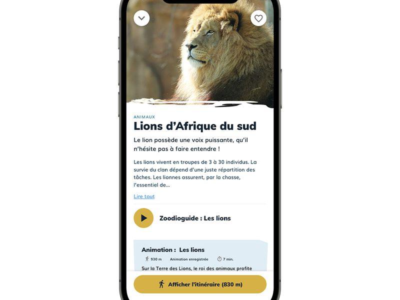 Animaux - Application mobile du ZooParc de Beauval