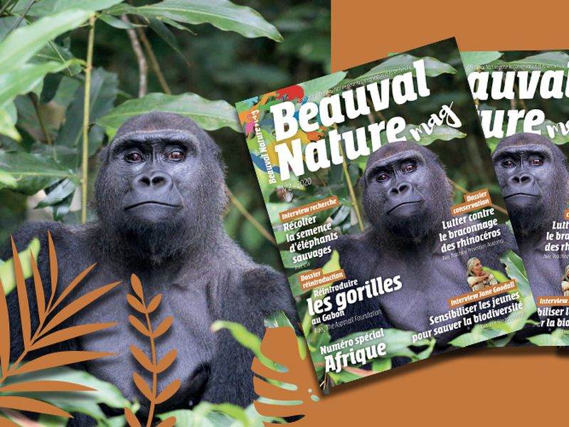 Magazine numéro 2 Beauval Nature - Association Beauval Nature - ZooParc de Beauval