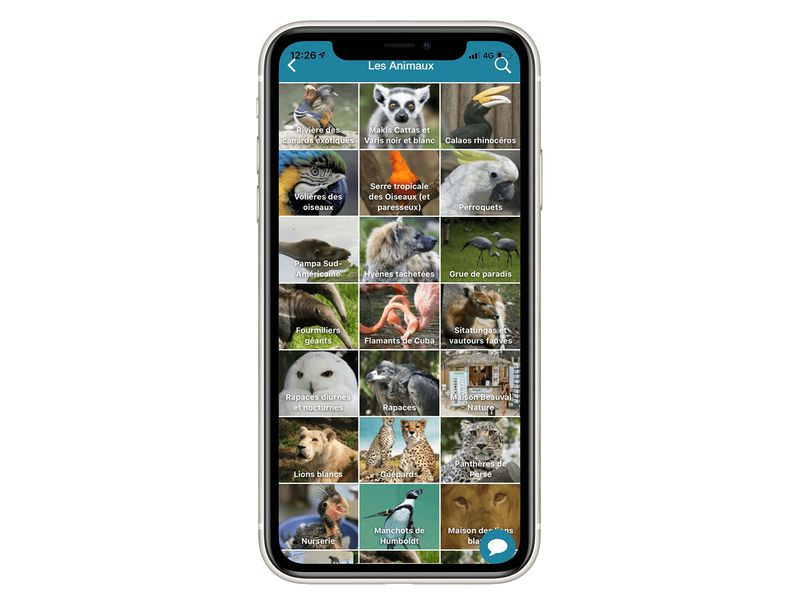 Les animaux - Application mobile du ZooParc de Beauval