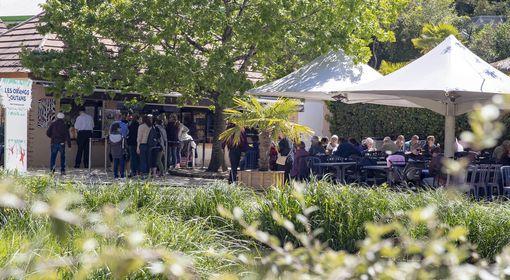 Les Orangs-outans - Restaurant - ZooParc de Beauval