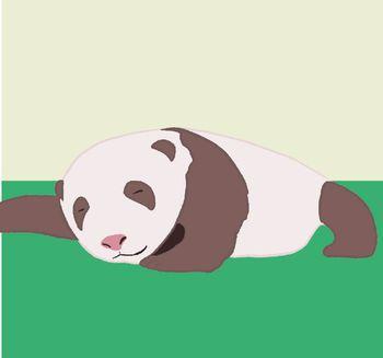 Croissance bébé panda géant - 3 semaines - ZooParc de Beauval