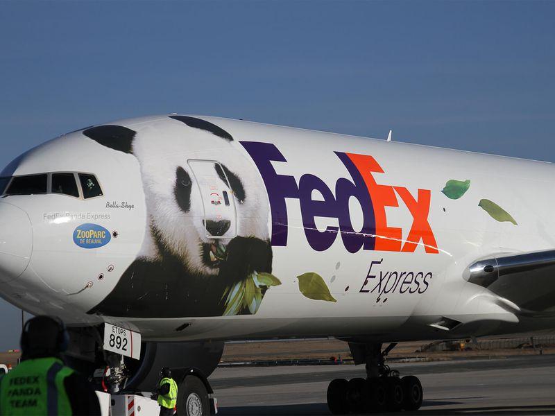 Arrivée à l'aéroport - Saga pandas ZooParc de Beauval