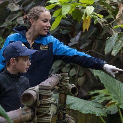 Contempler les animaux extraordinaires - Activité Soigneur d'un Jour junior - ZooParc de Beauval