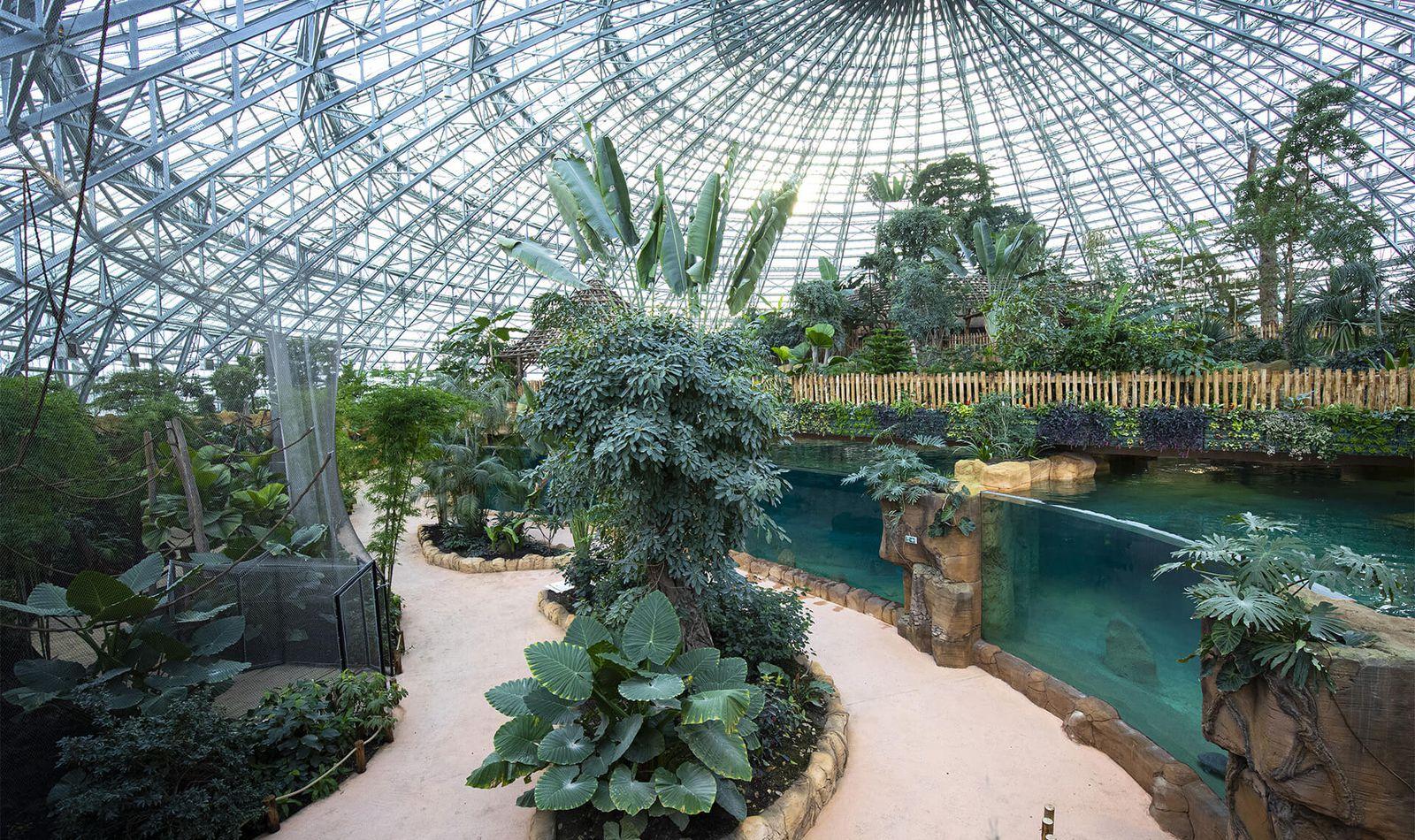 Le Dôme Équatorial Intérieur - Territoire du ZooParc de Beauval