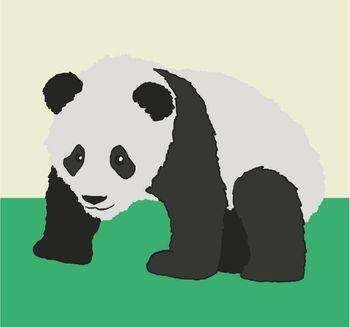 Croissance bébé panda géant - 1 an - ZooParc de Beauval