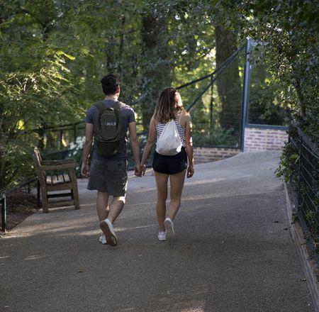 Dîner et visiter Beauval le soir - ZooParc de Beauval