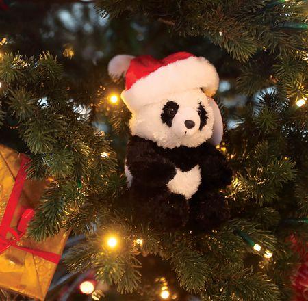 Fêtes Noël - ZooParc de Beauval