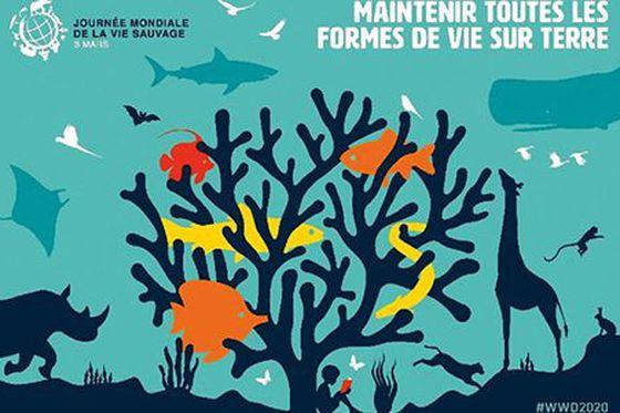Journée Mondiale de la Vie Sauvage 2020