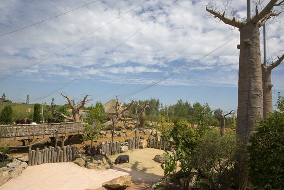 Vue du ciel de La Réserve des Hippopotames - Territoire du ZooParc de Beauval