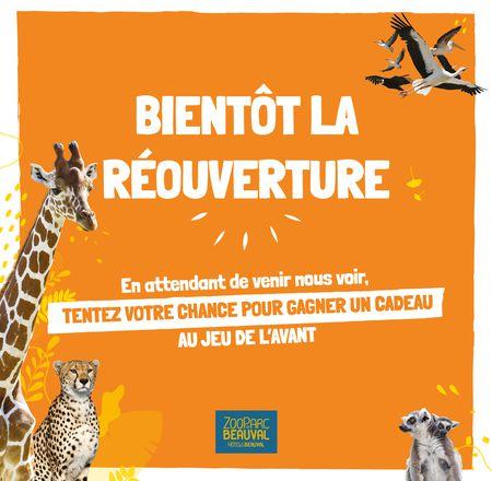 Jeu de l'avant réouverture - Jeu concours - ZooParc de Beauval