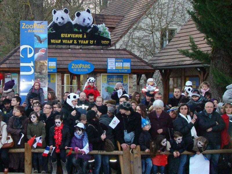 Le public au rendez-vous pour l'accueil des pandas - ZooParc de Beauval