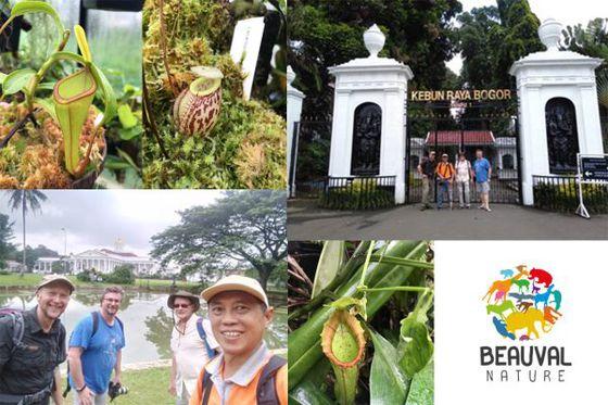 Un nouveau programme de conservation botanique, soutenu par Beauval Nature