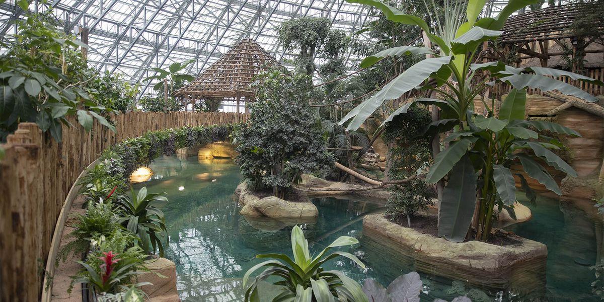 Intérieur Dôme Équatorial - Territoire du ZooParc de Beauval