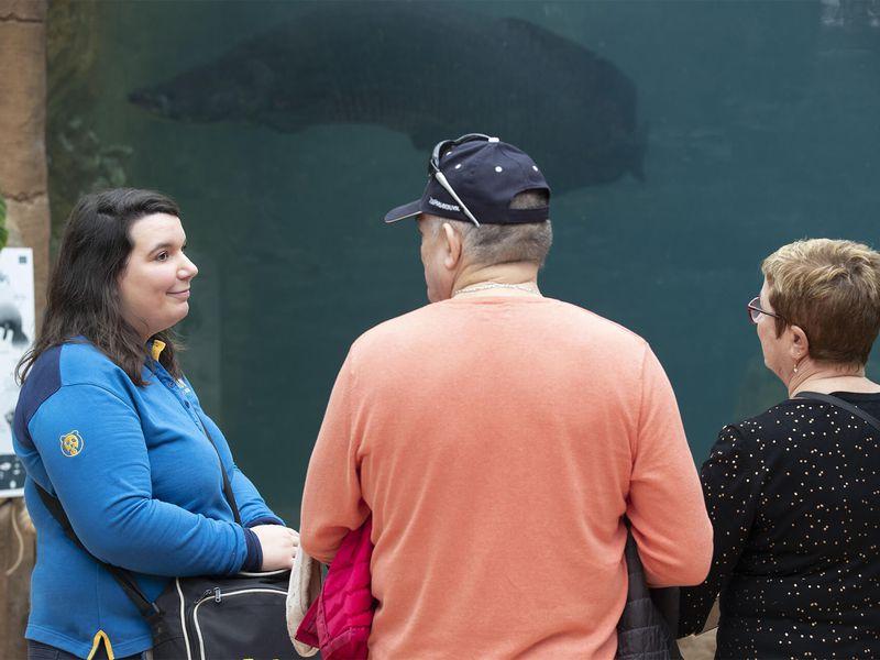 Visite guidée avec médiateur - Activités du ZooParc de Beauval