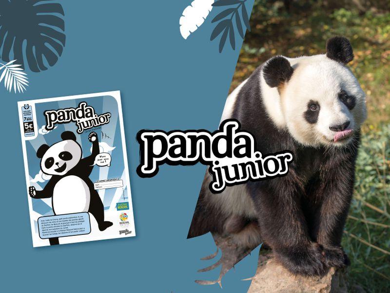 Carnet Panda Junior - Activités du ZooParc de Beauval