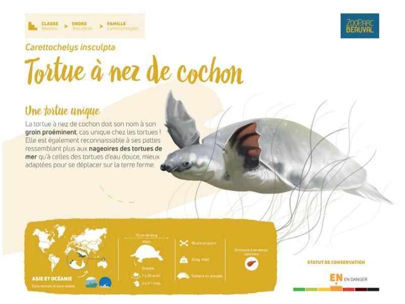 Nouveau panneau pédagogique du Dôme Équatorial - Pédagogie - ZooParc de Beauval