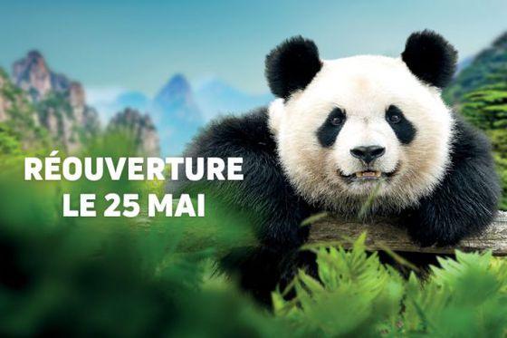 Réouverture du ZooParc et ses Hôtels le 25 mai