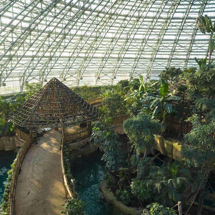 Le Dôme Équatorial - Intérieur - ZooParc de Beauval