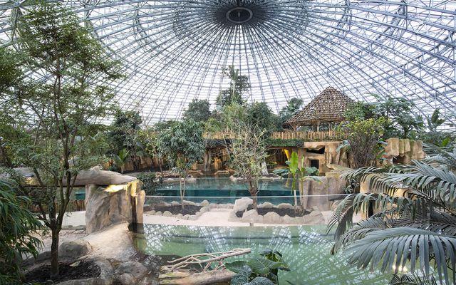 Le Dôme équatorial - L'histoire du ZooParc