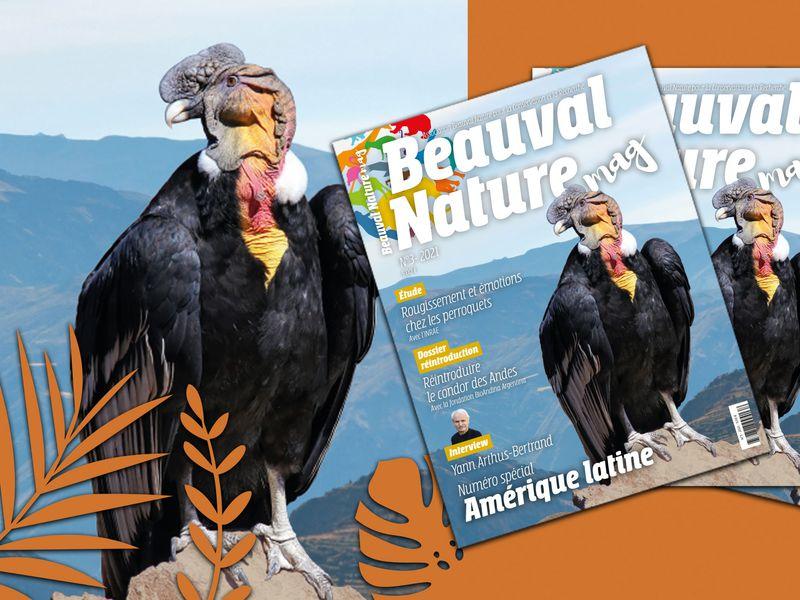 Magazine numéro 3 Beauval Nature - Association Beauval Nature - ZooParc de Beauval