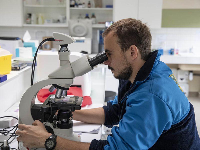 Laboratoire - Clinique vétérinaire et centre de recherche - ZooParc de Beauval