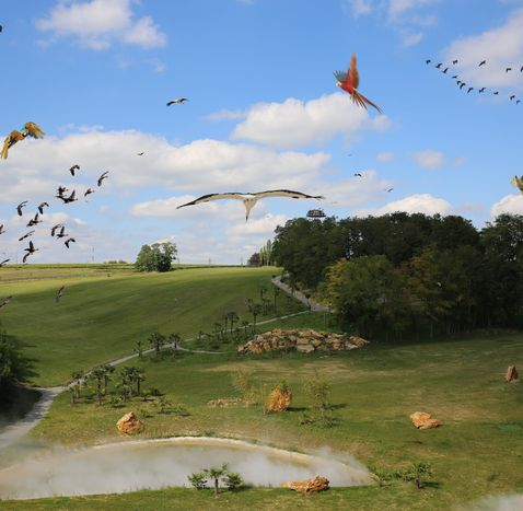 Spectacle d'oiseaux au ZooParc de Beauval - Les Maîtres des Airs
